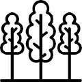 Àrea Forestal